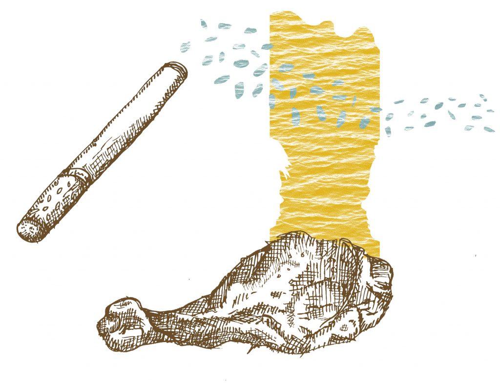 kip kerrie, margot holtman, illustratie, potaatoo