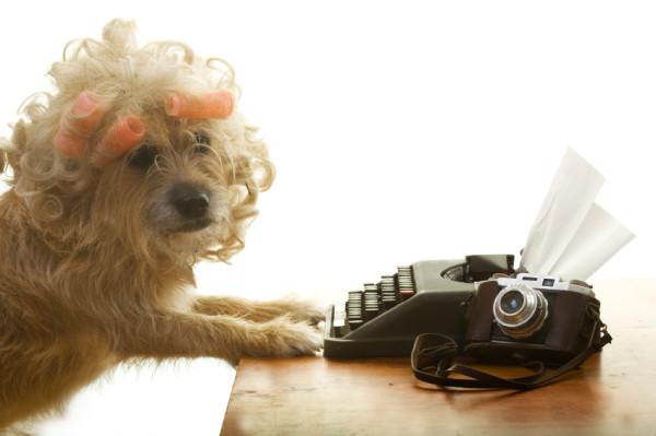 dog-funny-writing